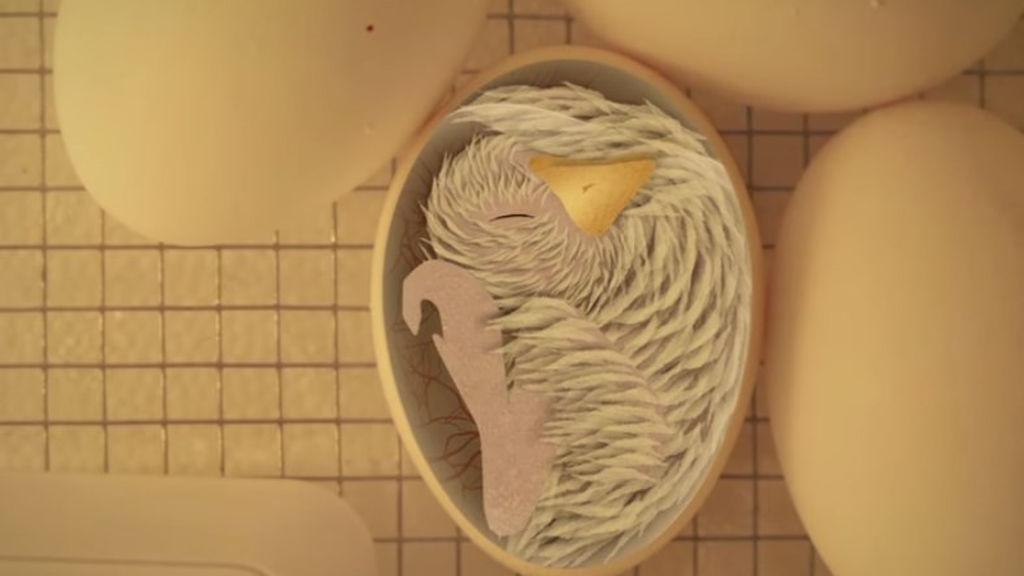Yumurtanın içindəki cücələrin necə nəfəs aldığını bilirdiniz?
