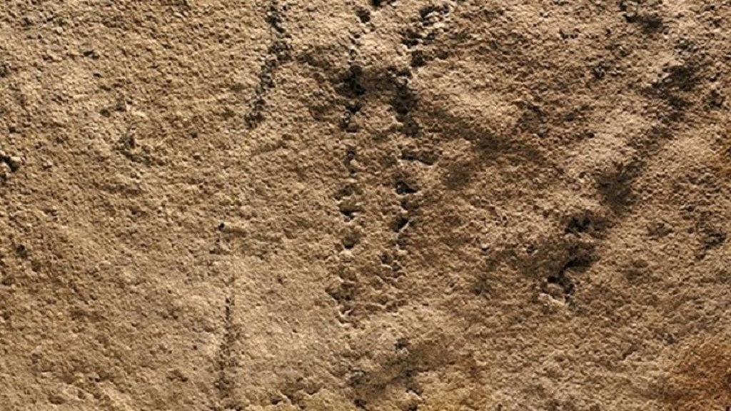 Çində 551 milyon illik 'Dünyanın ən qədim ayaq izi' tapıldı!